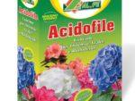 Acidofile Alfe