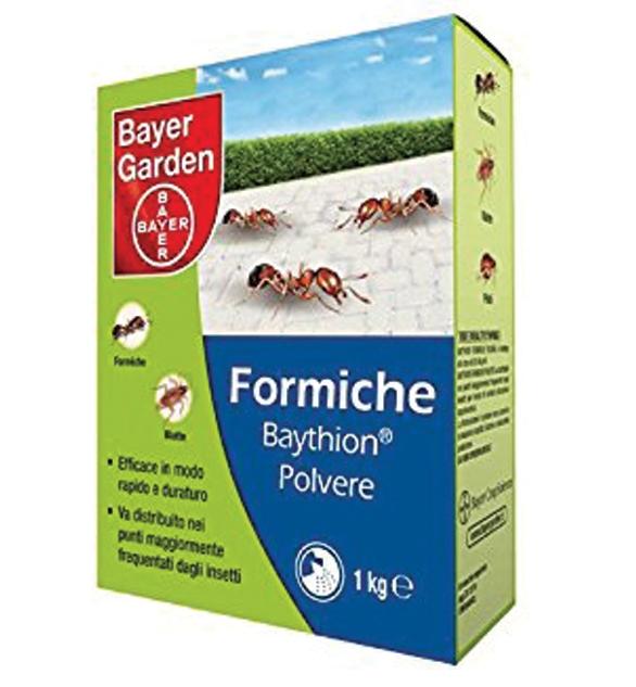 Baythion Polvere