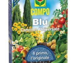 Compo Blu