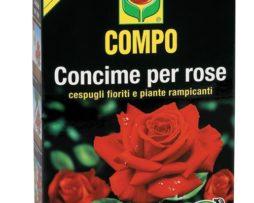Compo Guano Rose