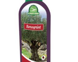 Concime Borosprint