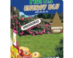 Flortis Energy Blu