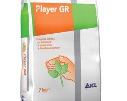 Player GR