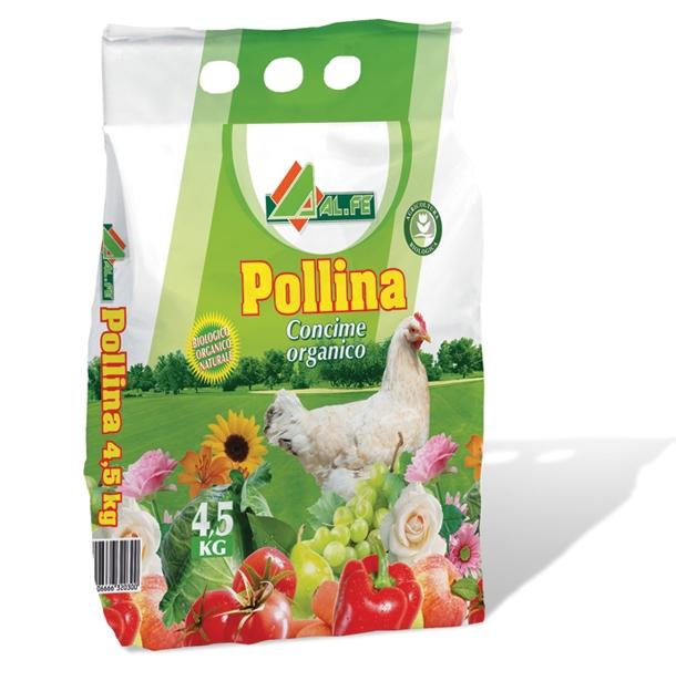Pollina Alfe