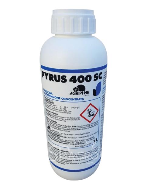 Pyrus 400