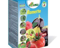 Ramette Alfe