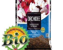 Terriccio Orchidee