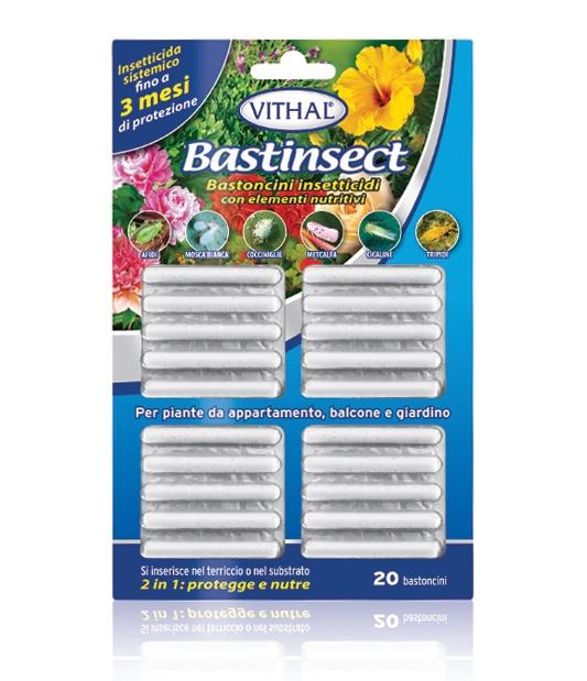 Vithal Bastinsect